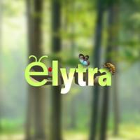Elytra