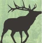 cazadormad