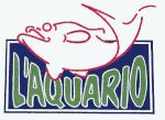 aquariocatss