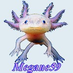 Megane59