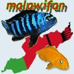 malawifan