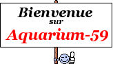 Novice en aquariophilie 165113
