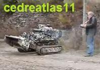 cedreatlas11