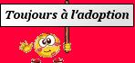 toujoursàladoption