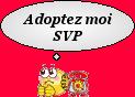 LOOPING - x epagneul 15 ans (9 ans de refuge) - Sos Animaux à Moineville (54) 458950