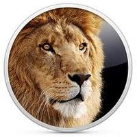 lion6774