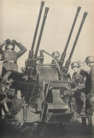flak 31