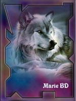 Marie BD