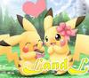 LandL