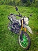 hector221