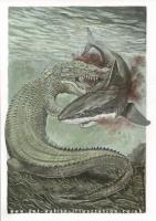 reptilesporosus