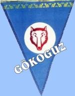Gök-Oguz