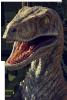 Raptor62400