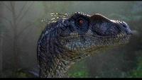 Jurassic Park Forever