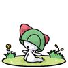 Banque Pokémon de la Team Ultima S30410
