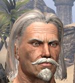 Sir Apsalon von Wegesruh