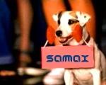 Samax