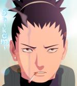 Shikami