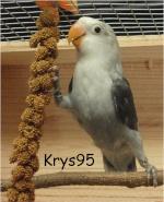 krys95