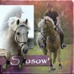 Sosow'