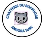 Chatterie du Bosphore
