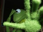 Kermit - O Sapo