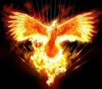PhoenixBR