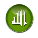 فيديو - فلاشات 119-0