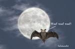 Moonbat