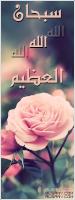 sameh la roze
