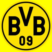 BVB 04g Puma