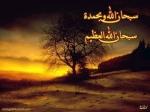 محمد 5555