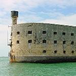 Les réactions aux émissions de Fort Boyard 1080-89