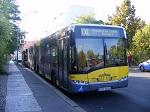 Urbino4148