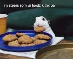 Ζύμες-Πίτες-Ψωμί 576-89