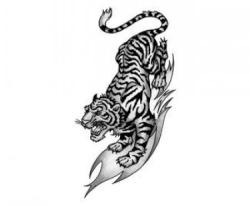 Виталя Tiger