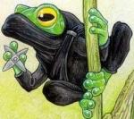 Green Frog Ninja