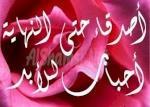 محمد ابوعلامة