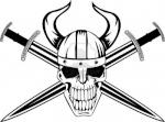 VikingMecenary