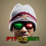 pito2901