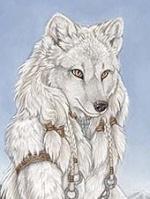 Волка