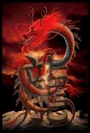 Dragon_D