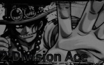 2.Division Ace