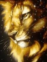 Gol. D. Lion