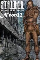 NEON22