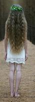 Nymeria Wulf