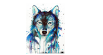 wolfxx
