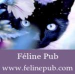 Forum de publicité - Royale-Pub 3005-83