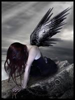 Angel Negro