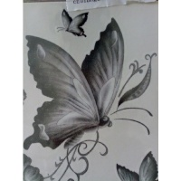 Les Anges 2572-93